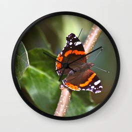Admiral On The Apple Tree Branch #decor #society6 Wall Clock