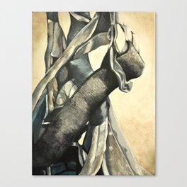 Rock Climbing Harness Canvas Print