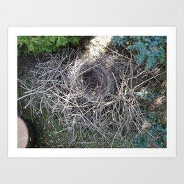 Magpie Nest Art Print