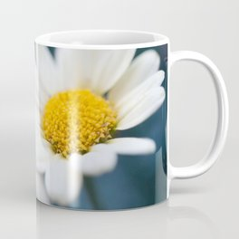 Spring Love #2 - White Marguerite Daisy Flower #decor #art #society6 Coffee Mug