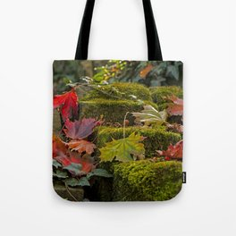 Autumnlights- Indian Summer IV Tote Bag