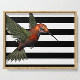 Colorful Hummingbird & Horizontal Stripes Serving Tray