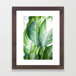 tropic abstract Framed Art Print