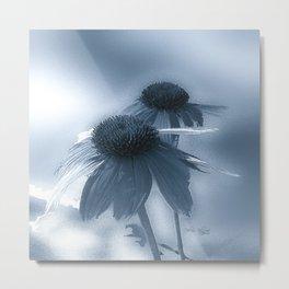 Windflower in Bue Metal Print