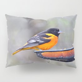 Oranges for the Oriole Pillow Sham