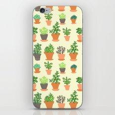 Windowsill Garden iPhone & iPod Skin
