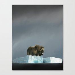 Muskox Chillin' on an Iceberg Canvas Print