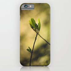 Spring at Nesmith Point Slim Case iPhone 6s