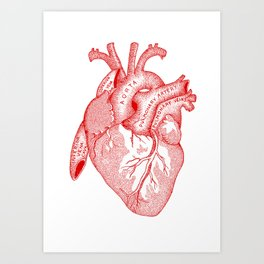 Study of the Heart [red] Art Print