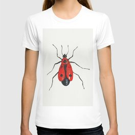 Firebug from Insects and Fruits (1660-1665) by Jan van Kessel T-shirt