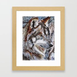 Gray Wolf Watches and Waits Framed Art Print