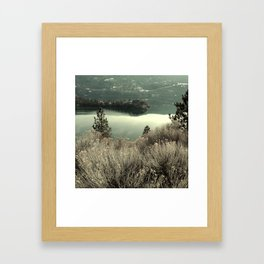 Amazing Weed Framed Art Print