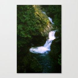 Upper Twin Falls Canvas Print