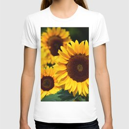 sunflower_34 T-shirt