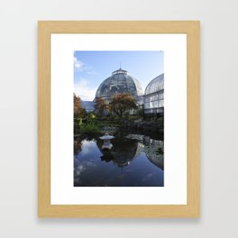 The Pond Framed Art Print