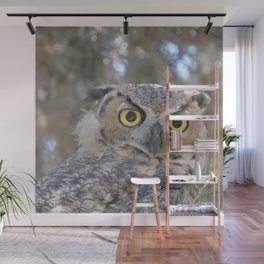 Young Owl at Noon Wall Mural