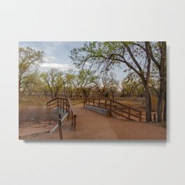 Bridge amid cottonwood trees in the Bosque along Rio Grande River in Albuquerque, New Mexico Metal Print