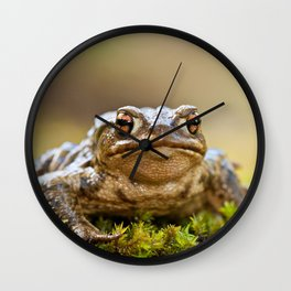 Portrait of a common frog Wall Clock