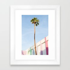 Palm at the Saguaro Framed Art Print