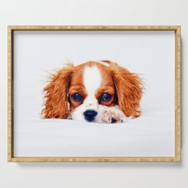 Cavalier King Charles Serving Tray