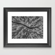 Snow pine forest Framed Art Print