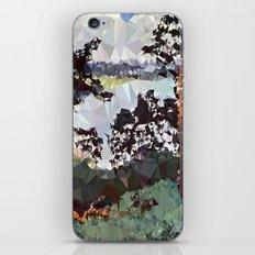 Landscape N. 5 iPhone & iPod Skin