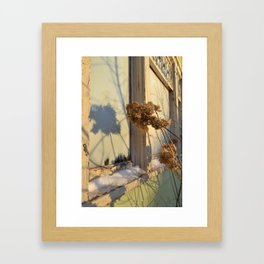 Winter Hydrangeas  Framed Art Print