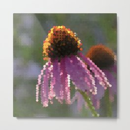 nic - bright pink echinacea flower gleaming in golden hour Metal Print