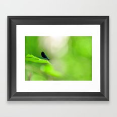 Blue Damsel and the Lime Green Sky Framed Art Print
