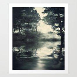 Misty pine forest Art Print