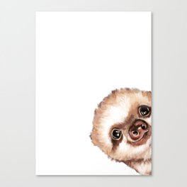 Sneaky Baby Sloth Canvas Print