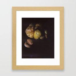 Ranunculus Still Life Framed Art Print