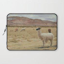 Lama Pampa bolivie Laptop Sleeve