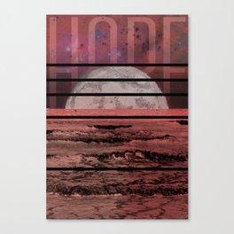 Midnight Swim Canvas Print