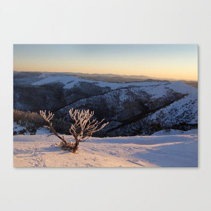 Snow on the Mountainside Canvas Print