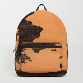 Abstract Earth Science Map Backpack