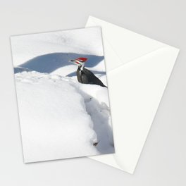 Snowbird 2 Stationery Cards