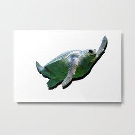 Turtle Wave Metal Print