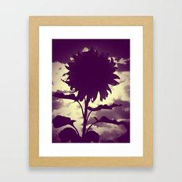 Purple Sunflower Framed Art Print
