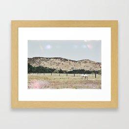 California Countryside Framed Art Print
