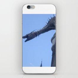 Nice one Dragon! iPhone Skin