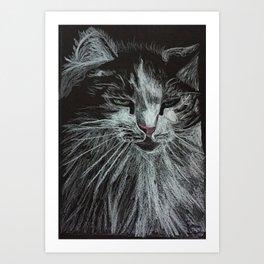Oreo the cat Art Print