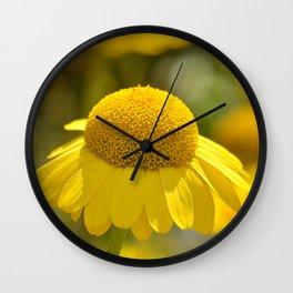 Yellow flower macro 253 Wall Clock