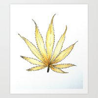 cannabis Art Prints featuring Golden Cannabis by  Can Encin