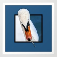 Swan with 3D pop out of frame effect Art Print