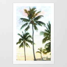 Palms at Dusk Art Print