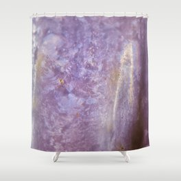 Lady slipper seashell mother of pearl Shower Curtain
