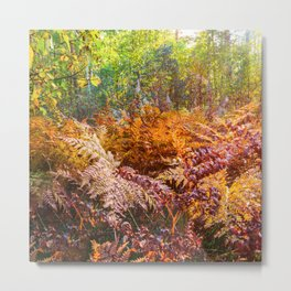 Autumn fern Metal Print