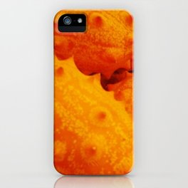 Kiwano iPhone Case