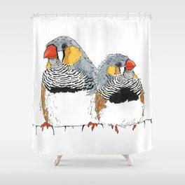 Zebra Finch Buddies Shower Curtain